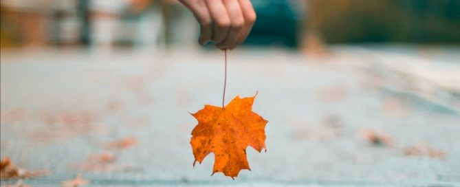 Picking Up Leaf Can Cause Lower Back Pain That Radiates Down Both Legs