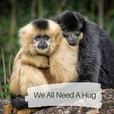 we need a hug to build emotional resilience